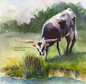bennett-cow-wetland smaller