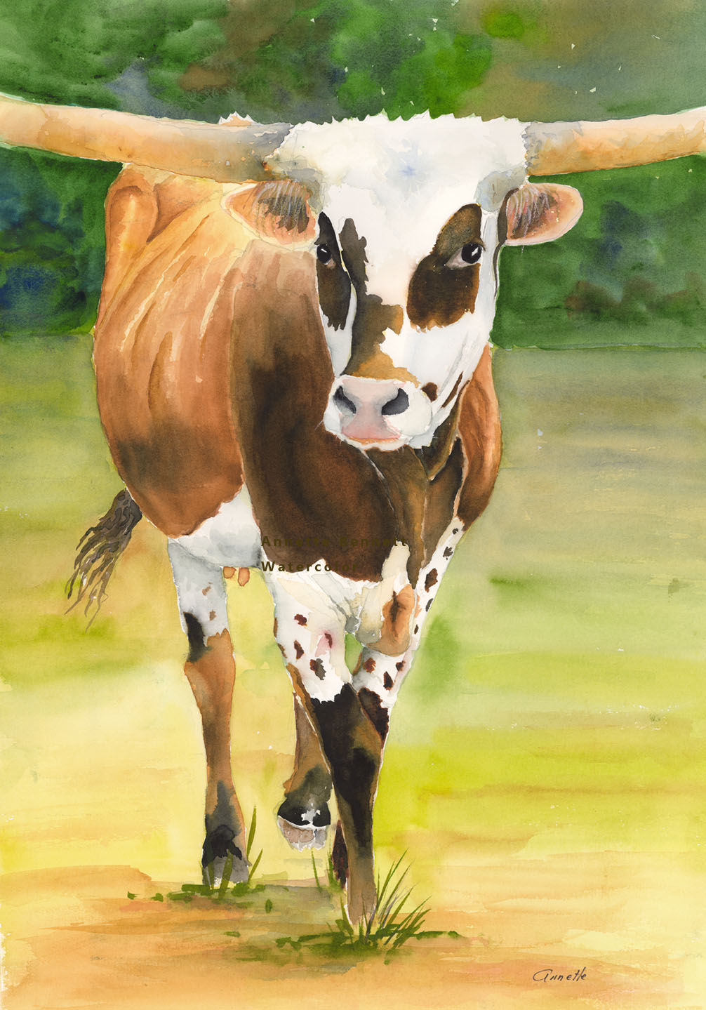 cattle | Annette Bennett Watercolor ART