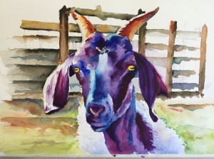 A Purple Goat