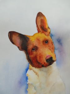 dogs, custom, protrait, border collie, basinji, painting,