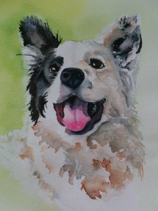 dog, painting, watercolor, portrait