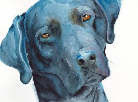 black lab dog watercolor