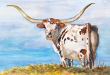 texas longhorn red and white original watercolor painting by annette bennett-086