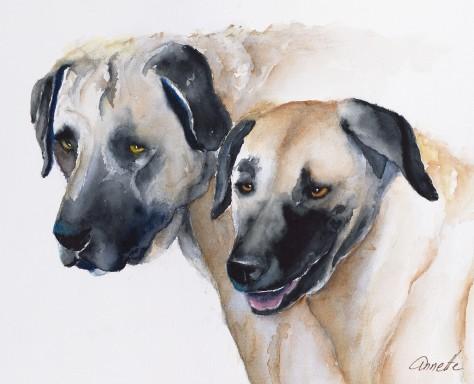 kangal goat dogs watercolor orignla painting print canvas by annette bennett
