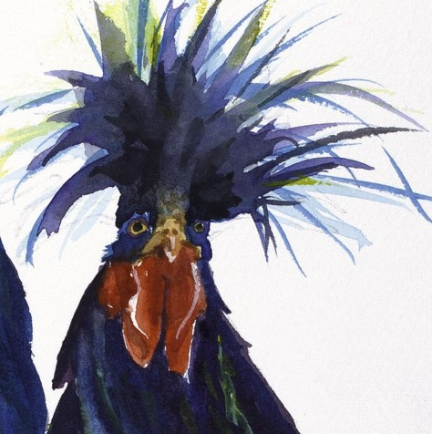 rooster chicken  face black and blue original watercolor painting print canvas by annette bennett
