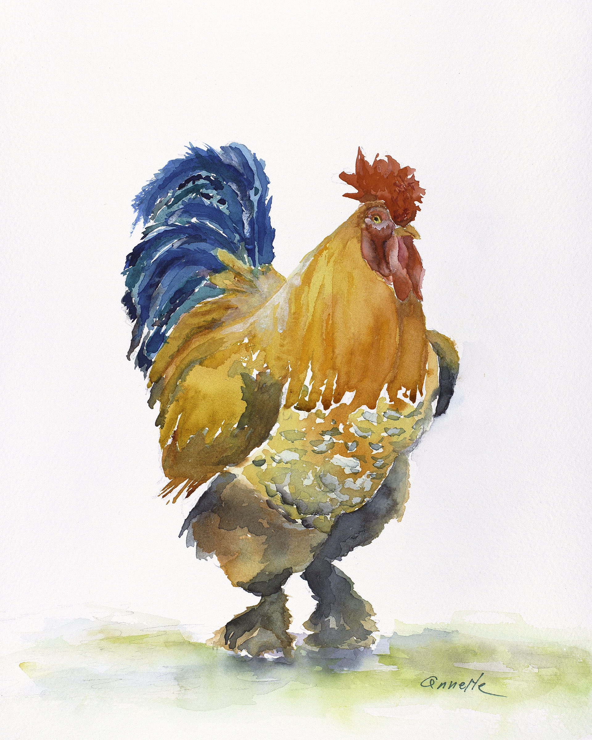 rooster chicken orange gold blue original watercolor painting
