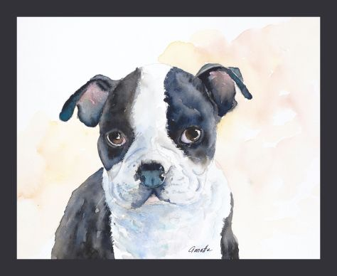 boston terrier original watercolor painting by annette bennett with mat