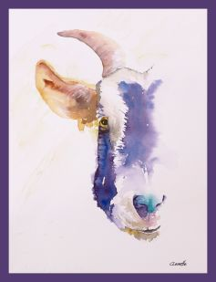 purple half goat face original watercolor with border